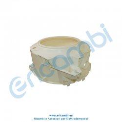Semivasca anteriore
